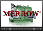 MG-2DFS-2 Video 1